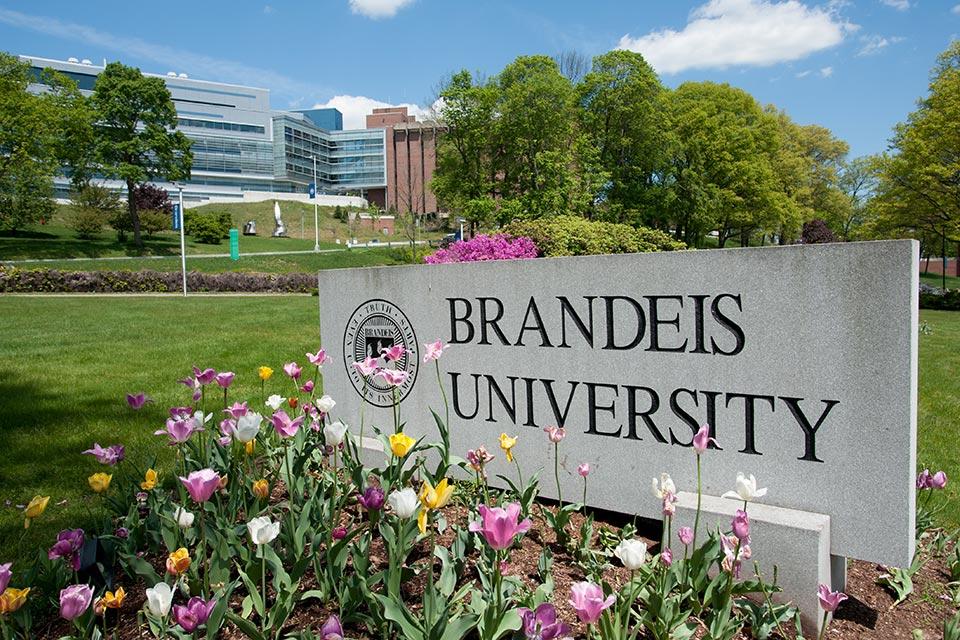 美国留学申请选校 Brandeis University