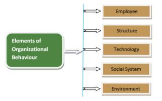 Organizational Behaviour论文代写